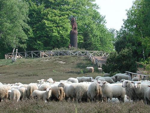 Landschap-Overijssel-partner-2