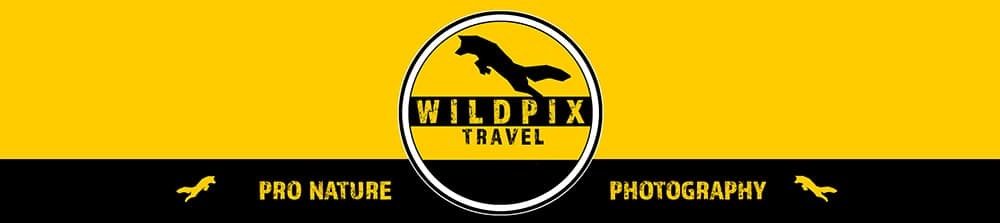 wp-logo-banner-kort-text-1000-pix